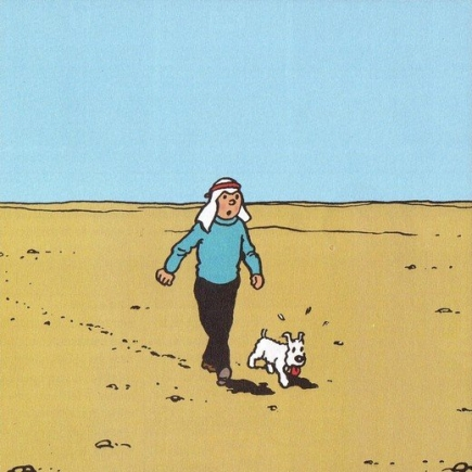 dvd_tintin_14_01.jpg