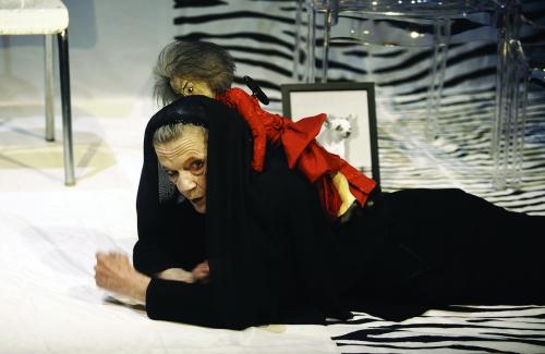 le président,thomas bernhard,michel raskine,théâtre,croix-rousse,lyon,littérature