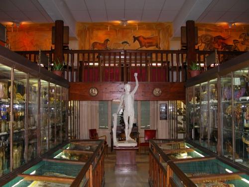 musée d'anatomie.jpg