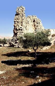El Azariyeh,béthanie,paques,résurrection,lazare,christianisme,religion