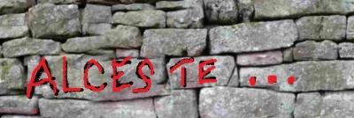 Le mur d'Alceste.jpg